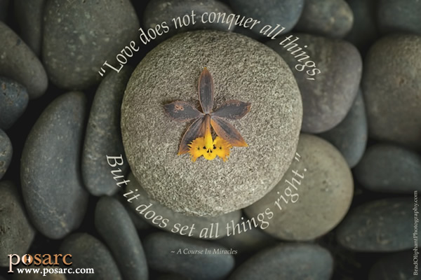 PoSARC Inspiration - Love does not conquer all things