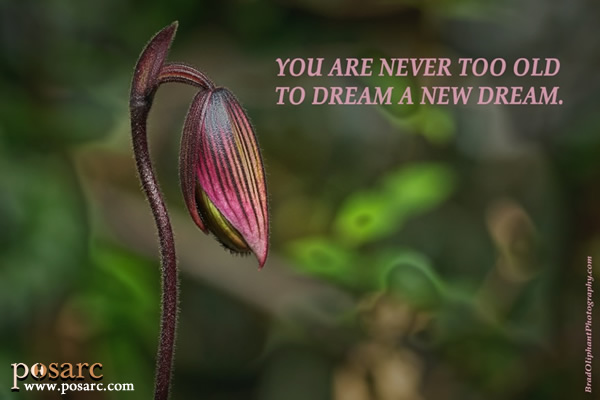 PoSARC Inspiration - You Are Never Too Old